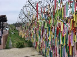 A fence  at Imjingak park, on the South Korean side, that separates the country from its northern neighbour. It's filled with ribbons with prayers and wishes for North Korea and reunification written on them. (Photo: World Watch Monitor)